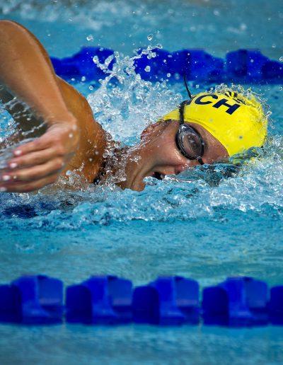 swimming-swimmer-female-race-73760